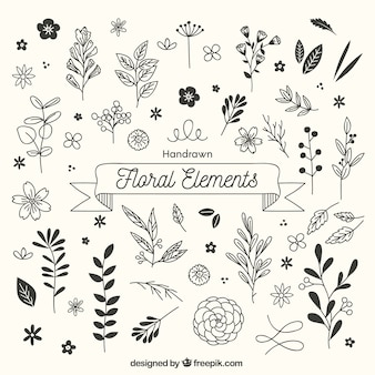 Hand gezeichnete Blumenelemente mit flüchtiger Art