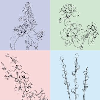Hand gezeichnete blumenfrühlingsillustrationen mit botanisch natürlich blühenden apfelkirschweiden- und fliederzweigen