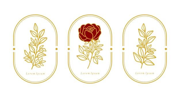 Hand gezeichnete botanische rosen- und blattblumenlogo-elementkollektionen