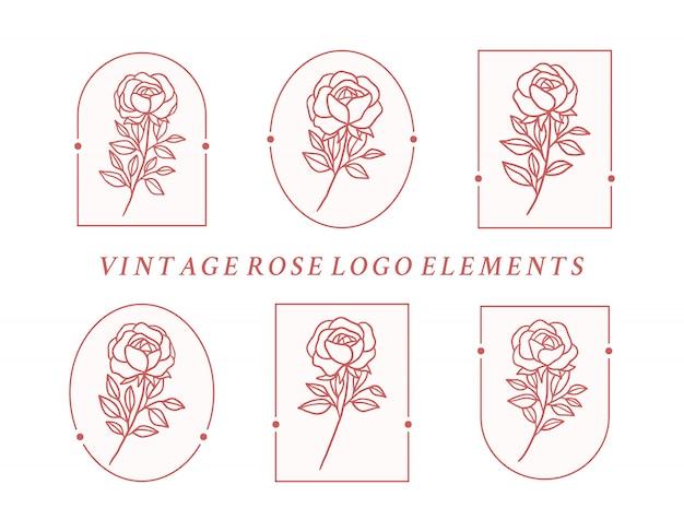 Hand gezeichnete botanische rosenblumenlogoelementsammlung