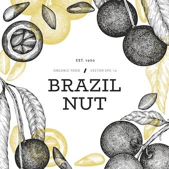 Hand gezeichnete brasilianische nusszweig- und kernelentwurfsschablone