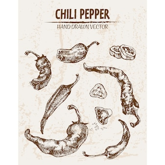 Hand gezeichnete chili peper sammlung