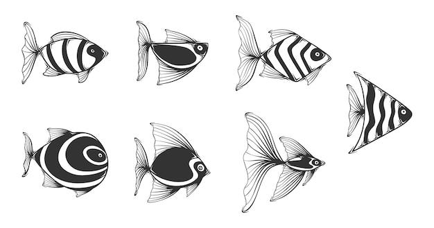 Hand gezeichnete exotische fischsammlung