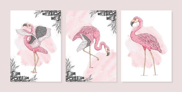 Hand gezeichnete exotische flamingoplakatschablonensammlung