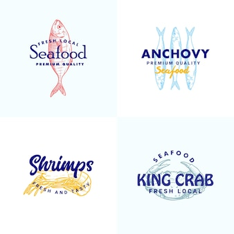 Hand gezeichnete fisch sardellen shripms krabben illustration logo vorlage vorlage für meeresfrüchte marke