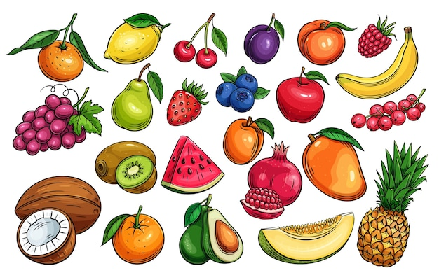 Hand gezeichnete frucht- und beerenikonen gesetzt