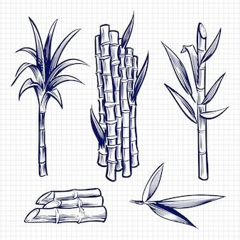 Hand gezeichnete gesetzte illustration des zuckerrohrs