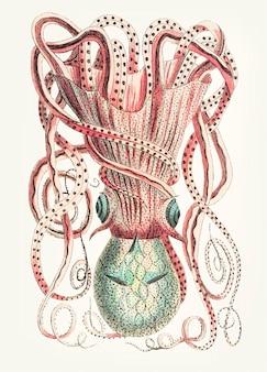 Hand gezeichnete granulierte tintenfische