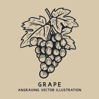 Hand gezeichnete gravurillustration der traube mit blattweinlese