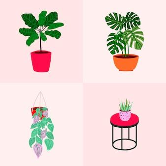 Hand gezeichnete karte mit tropischen zimmerpflanzen. beliebte zimmerpflanzen
