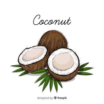 Hand gezeichnete kokosnussillustration