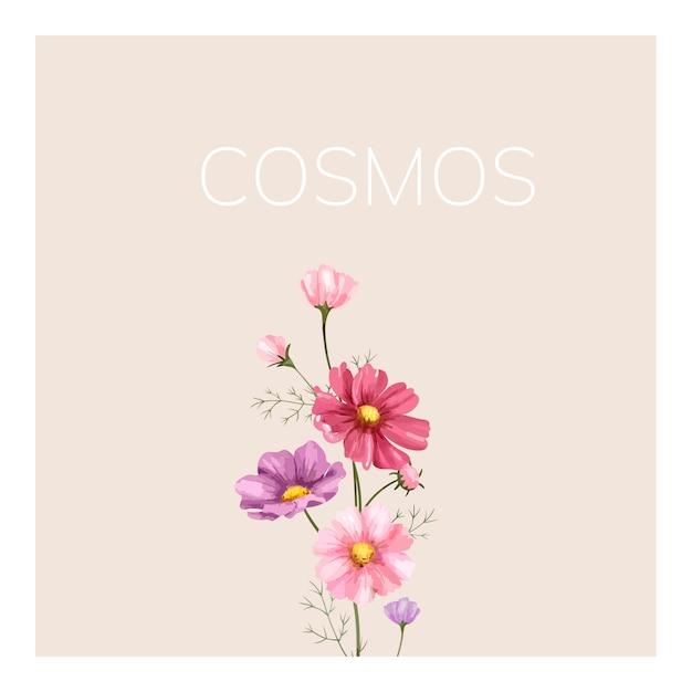 Hand gezeichnete kosmosblumenillustration