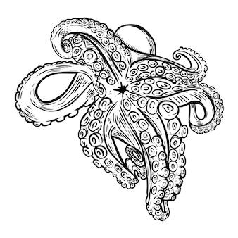 Hand gezeichnete krakenillustration. meeresfrüchte. element für logo, etikett, emblem, zeichen, poster, banner. illustration