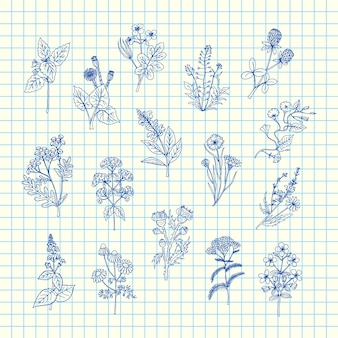 Hand gezeichnete medizinische kräuter stellten auf blaues zellblatt ein