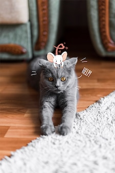 Hand gezeichnete nette maus auf dem kopf einer katze