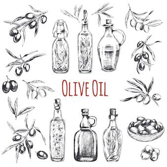 Hand gezeichnete oliven gravierte darstellung
