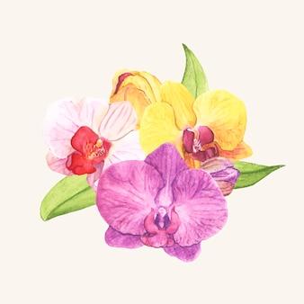 Hand gezeichnete orchideenblume lokalisiert