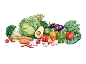 Hand gezeichnete Partie Gemüse