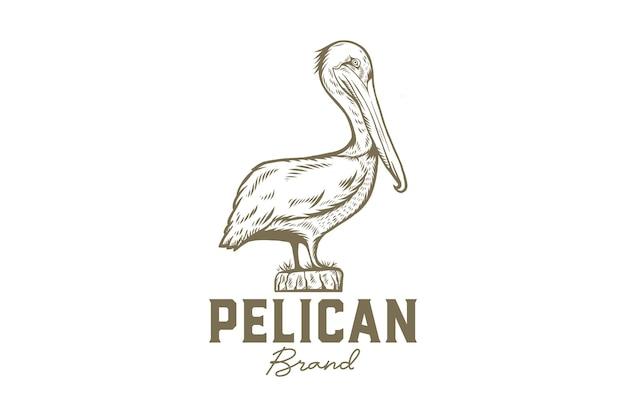 Hand gezeichnete pelikan-logo-vorlage