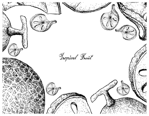 Hand gezeichnete rahmen von bael und melon fruits