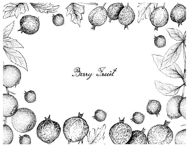 Hand gezeichnete rahmen von black velvet stachelbeere und heidelbeere