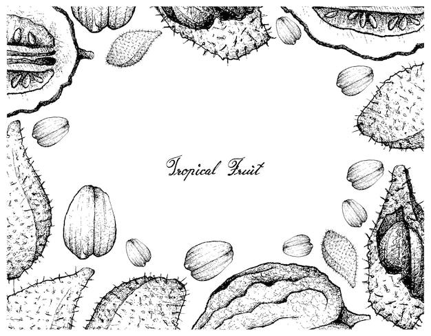 Hand gezeichnete rahmen von luk rakam und etrog fruits