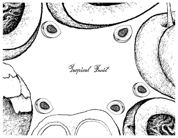 Hand gezeichnete rahmen von pfirsich oder nektarine und sugar palm