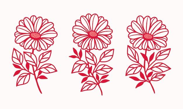 Hand gezeichnete rosa botanische gänseblümchen- und gerbera-blumenlogoelement-sammlung