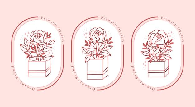 Hand gezeichnete rosa botanische rosenblumenelementkollektion für weibliches schönheitslogo