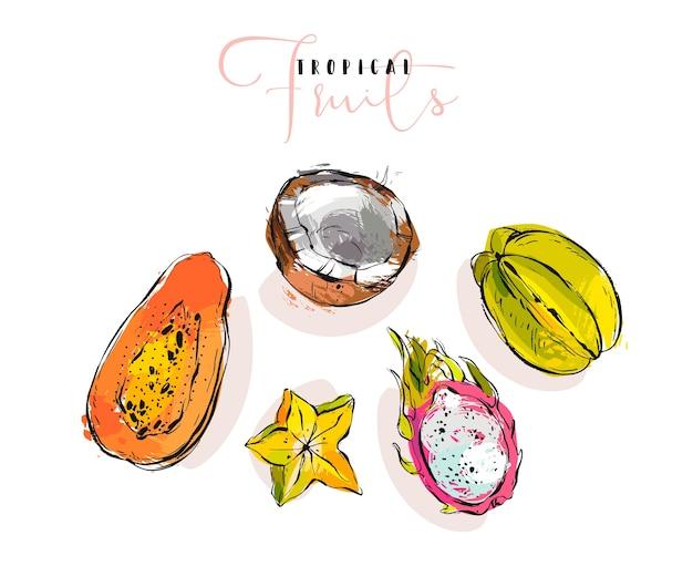 Hand gezeichnete sammlung exotischer früchteillustrationen mit kokosnuss, papaya, drachenfrucht und karambola