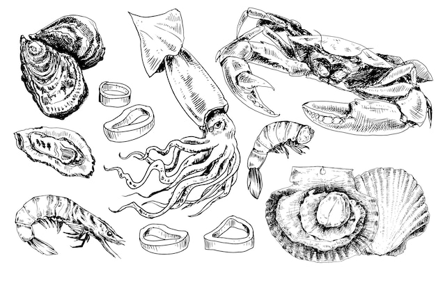 Hand gezeichnete sammlung von meeresfrüchten