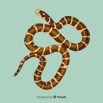 Hand gezeichnete schlangenillustration