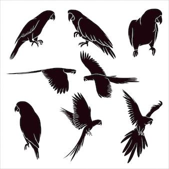 Hand gezeichnete silhouette der papageien