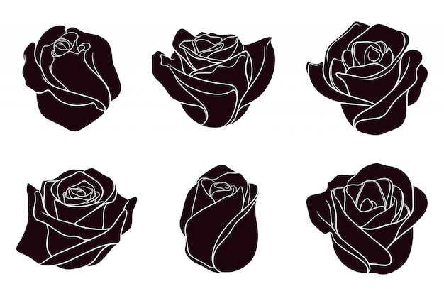 Hand gezeichnete silhouette der rosen