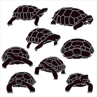 Hand gezeichnete silhouette der schildkröte