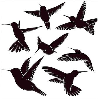 Hand gezeichnete silhouette des kolibris