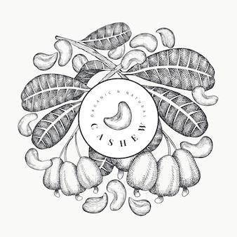 Hand gezeichnete skizze cashew-vorlage. bio-lebensmittelillustration auf weißem hintergrund. vintage nussillustration. botanischer hintergrund des gravierten stils.