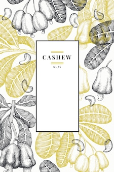 Hand gezeichnete skizze cashew-vorlage. bio-lebensmittelillustration auf weißem hintergrund. vintage nussillustration.