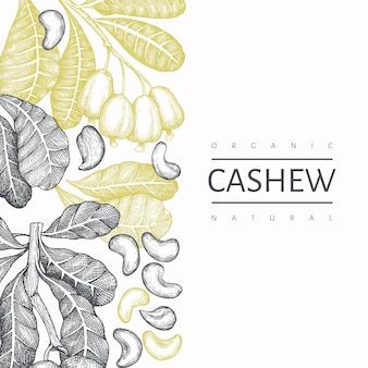 Hand gezeichnete skizze cashew-vorlage. bio-lebensmittelillustration auf weißem hintergrund.