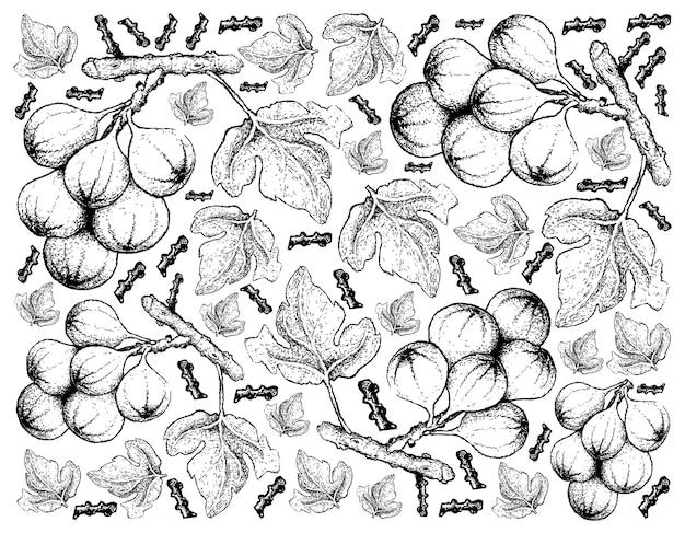 Hand gezeichnete skizze cluster feigenbaum