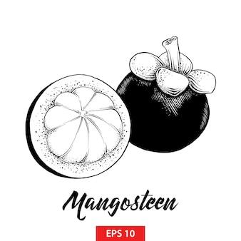 Hand gezeichnete skizze der mangostanfruchtfrucht im schwarzen