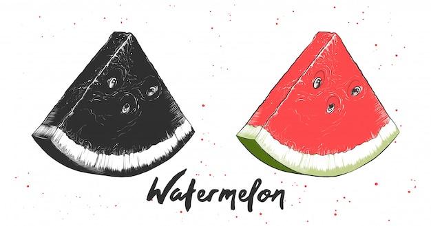 Hand gezeichnete skizze der wassermelone