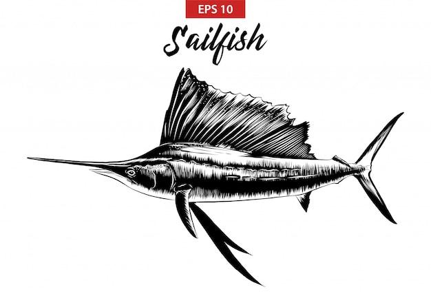 Hand gezeichnete skizze des segelfischs im schwarzen