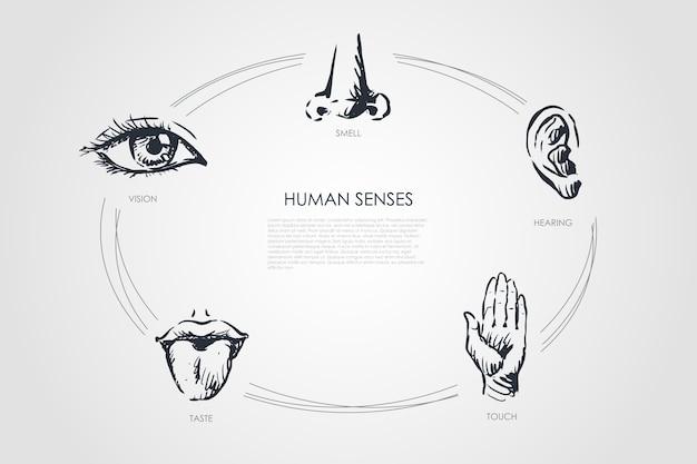 Hand gezeichnete skizze isolierte illustration
