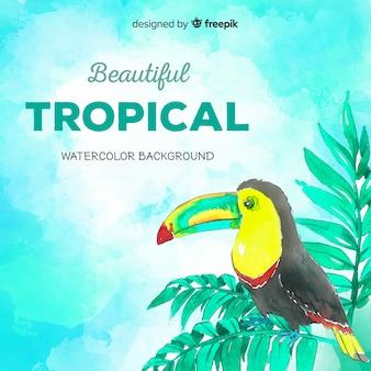 Hand gezeichnete tropische anlagen und vogelhintergrund