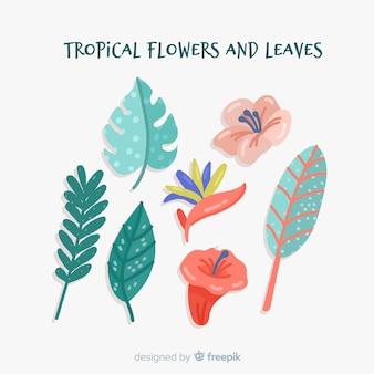Hand gezeichnete tropische blumen und blätter