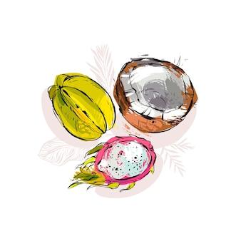 Hand gezeichnete tropische früchte