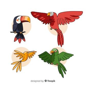 Hand gezeichnete tropische vogelsammlung