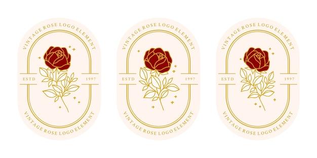 Hand gezeichnete vintage botanische rosenblumenlogoschablone und weibliche schönheitsmarkenelementkollektion