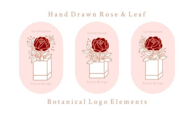 Hand gezeichnete vintage rosa botanische rosenblumen-logo-vorlage und weibliche schönheitsmarkenelement-sammlung